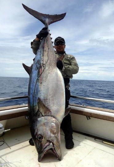 Big fishes of the world dogtooth tuna page 2 for Is tuna fish good for dogs