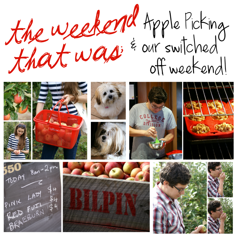 The Weekend That Was: Apple Picking and Our Switched Off Weekend