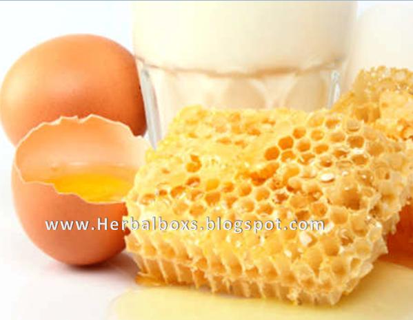 membuat obat kuat dengan telur dan bawang putih membuat jamu