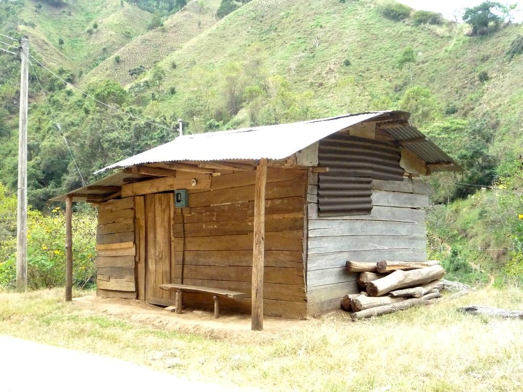 Flor guadadalupe investigaci n de una persona que vende - Casa madera economica ...