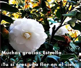 http://simplementetodos-campoazul.blogspot.com.es/
