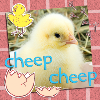 Picture of a cute baby chick from My Noisy Farm, an illustrated children's ebook