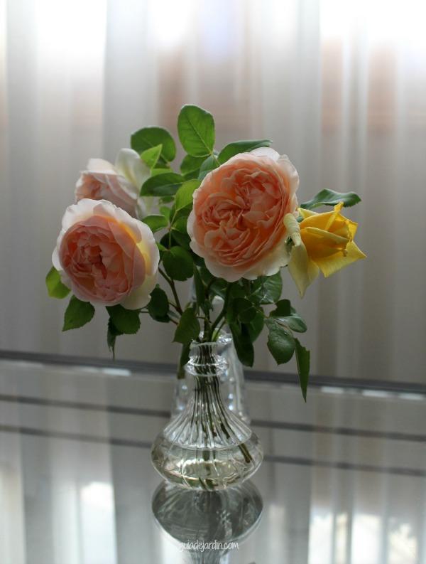 rosas Evelyn y Landora