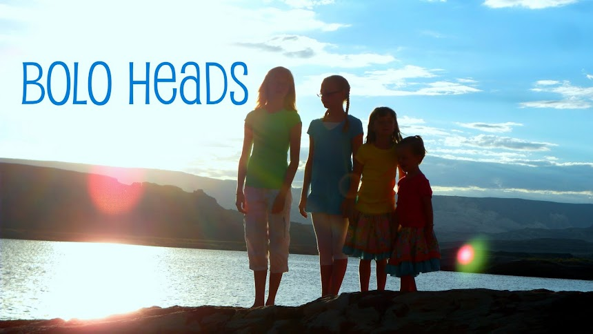 Bolo Heads