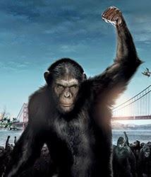 Planeta dos Macacos: Entre a Origem e o Confronto
