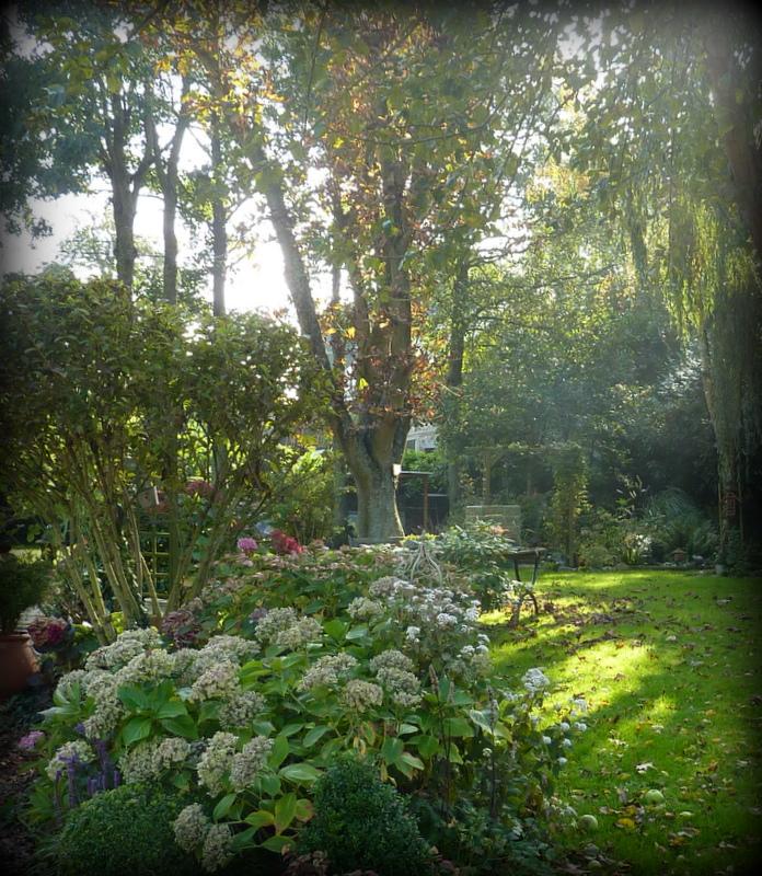 Le jardin d 39 oscar octobre au jardin for Jardin octobre