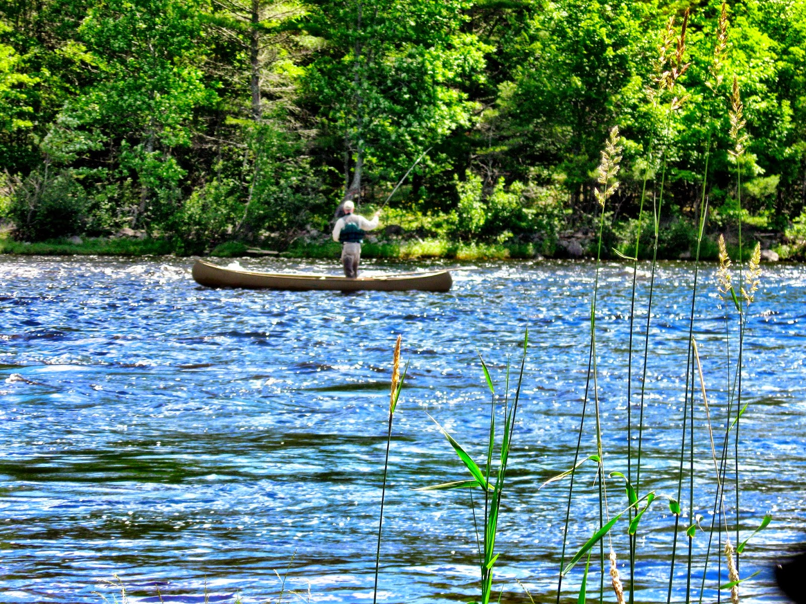 Maine Fishing