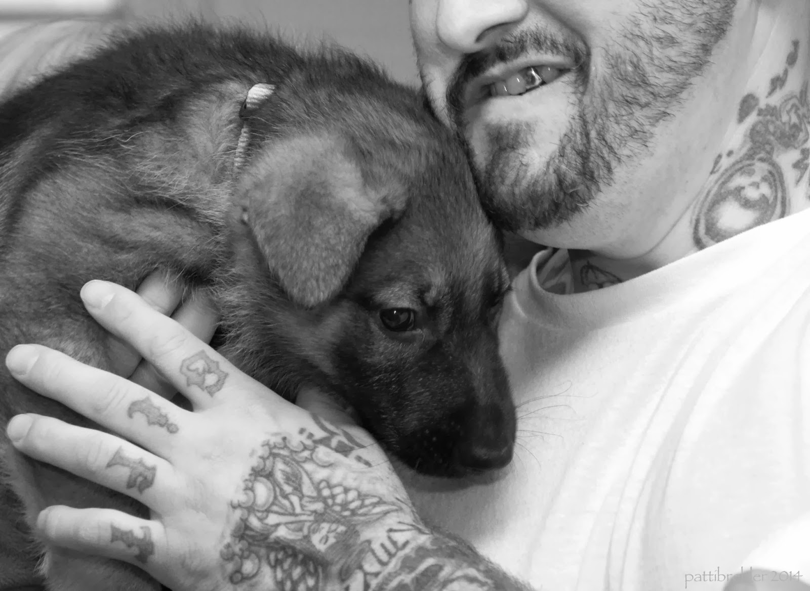 A close up shot of a grerman shepherd puppy being held in the arms of a tattooed man. The man is wearing a white t-shirt and you can only see the bottom half of his face. His neck has tattoos also.