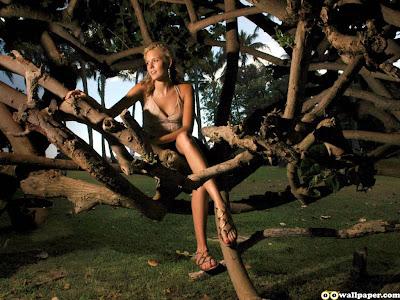 maggie_grace_beach_tree