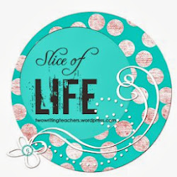 Slice of Life Challenge 2013