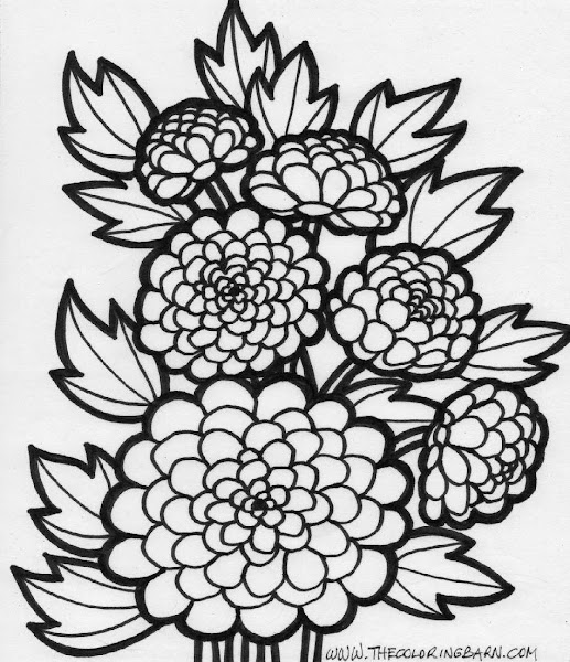 fall flowers coloring pages - photo#32