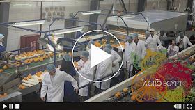 AgroEgypt видео канал