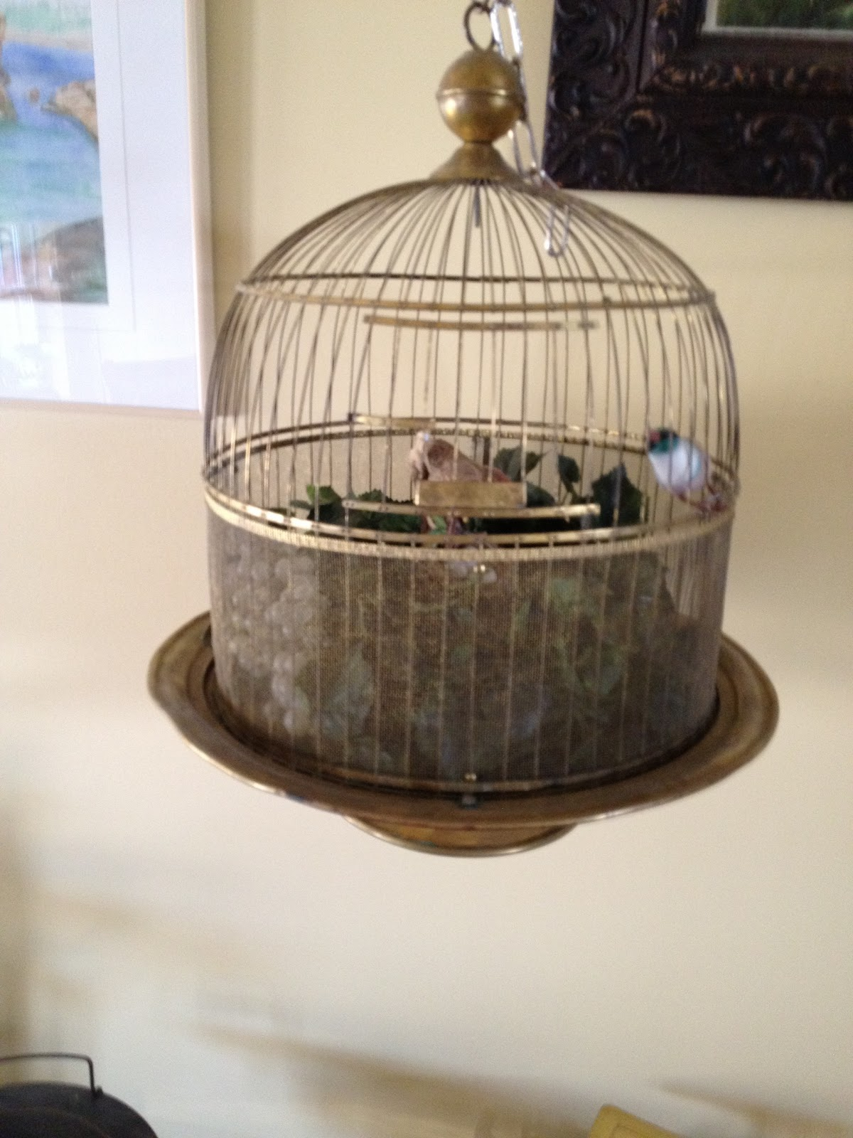 Old fashioned bird cages for sale 19