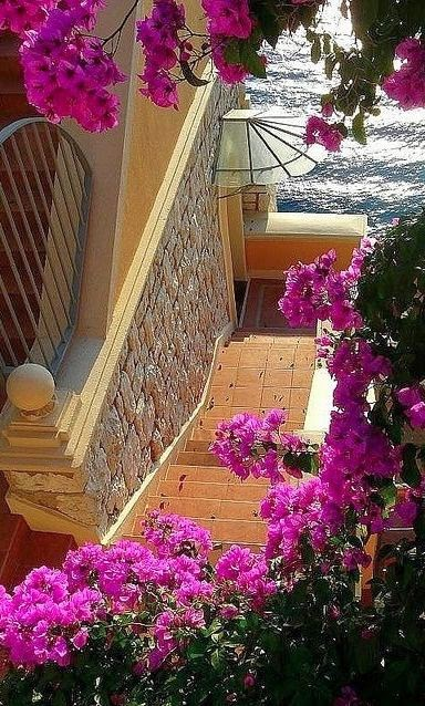 Stairs to the sea ~ Nice, France