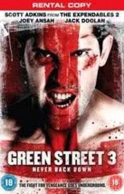 Ver Green Street 3: Never Back Down (2013) Online