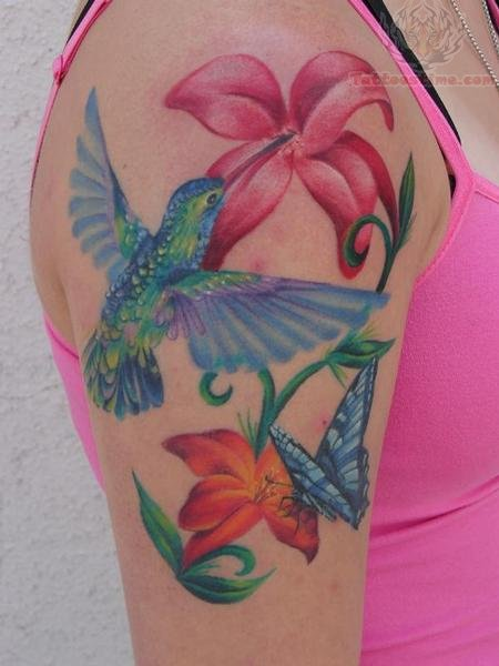 Tattoos of humming bird hummingbird tattoo on shoulder for Hummingbird tattoo designs