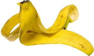 amarração da banana da terra