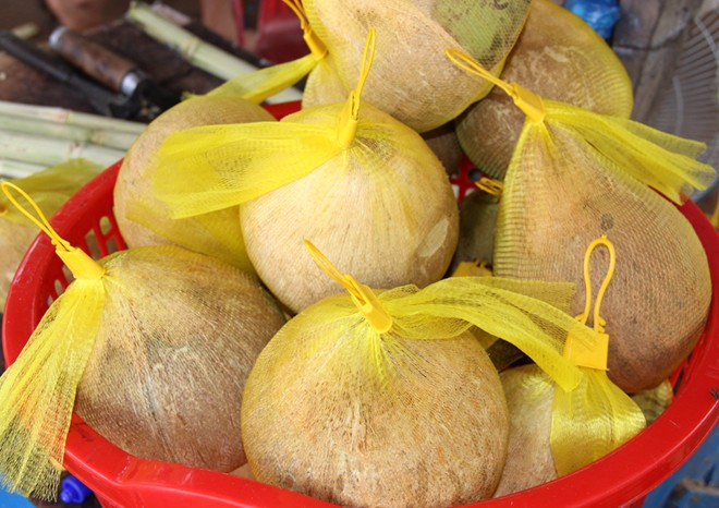 Đại lý bán dừa sáp cầu kè Trà Vinh giá rẻ tại Tp HCM Hà Nội
