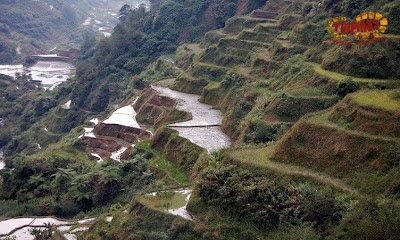 banaue rice terraces tour package