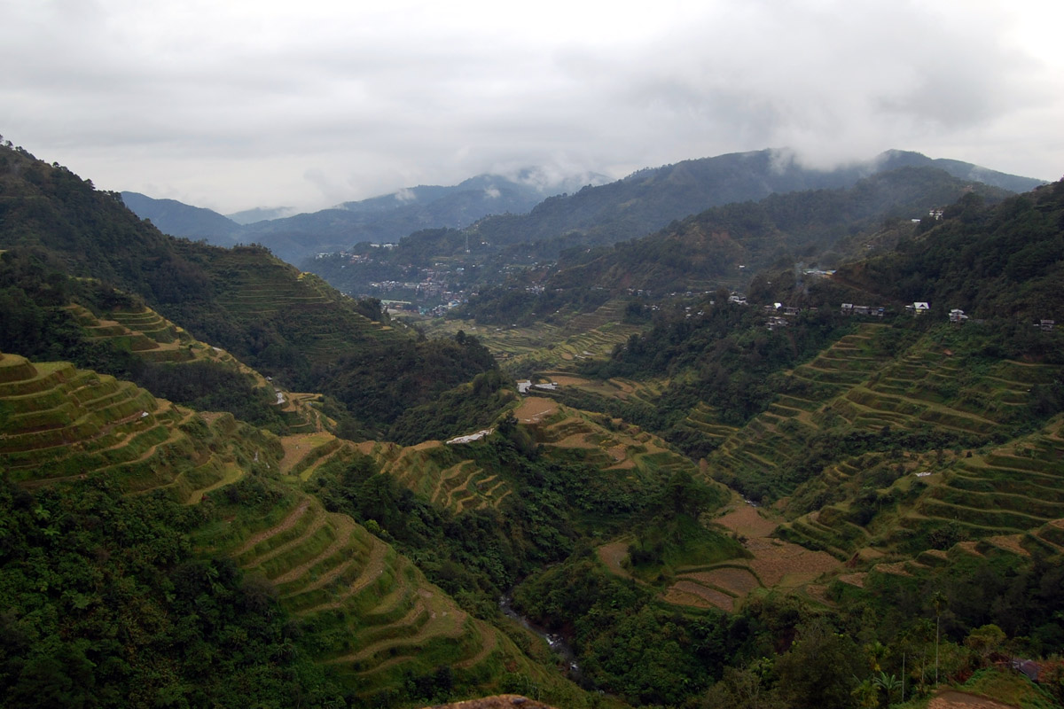 banaue rice terraces in ifugao my tour guide