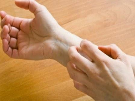 Cách trị một số bệnh thông thường từ lá tía tô
