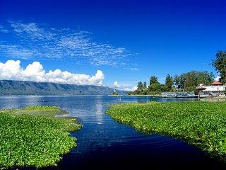 320 x 240 · 21 kB · jpeg, Cerita-Dongeng-toba-lake-Danau-Toba.jpg