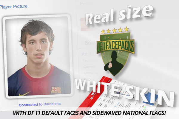 DF11 Football Manager 2014 Real Size White Skin