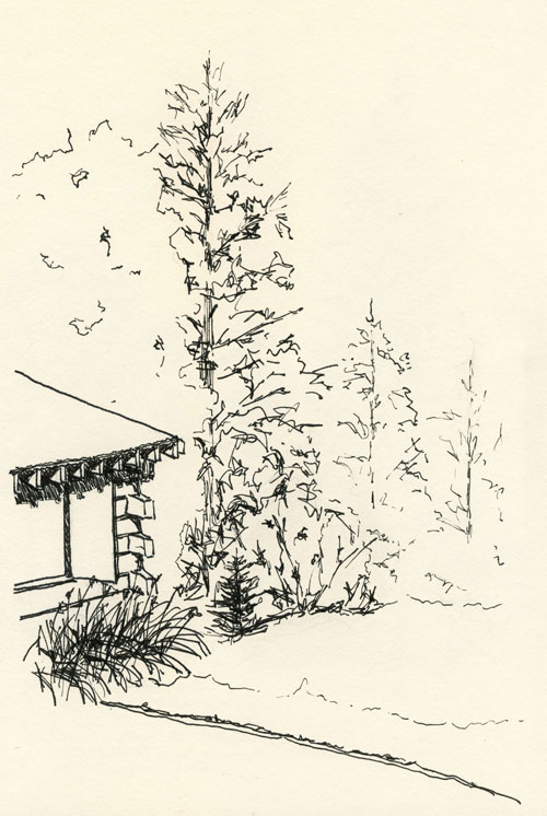 log cabin in the woods ink drawing