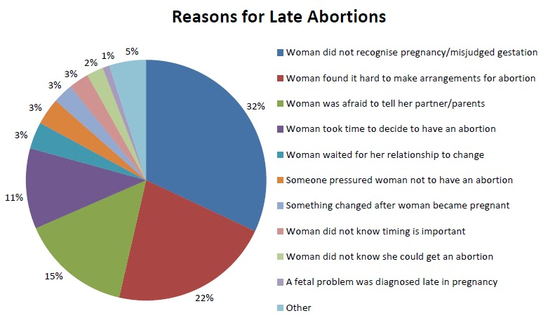 research on abortion essay