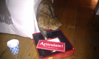 Tortoiseshell cat plays Articulate
