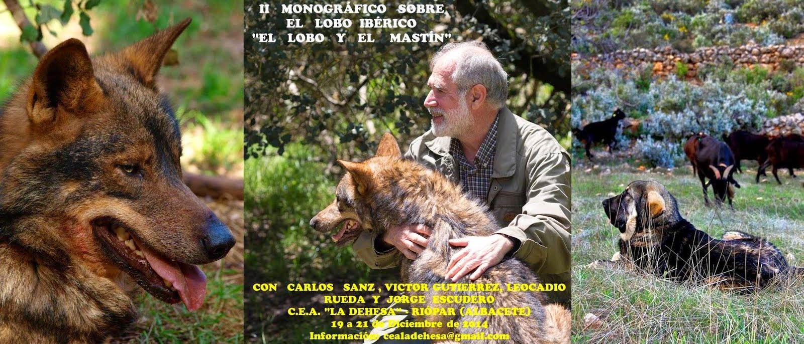 II Monográfico sobre el lobo ibérico.