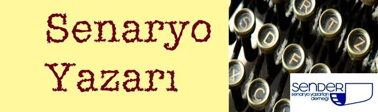 SENARYO YAZARI
