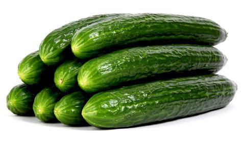 De poederdoos komkommer - De komkommers ...