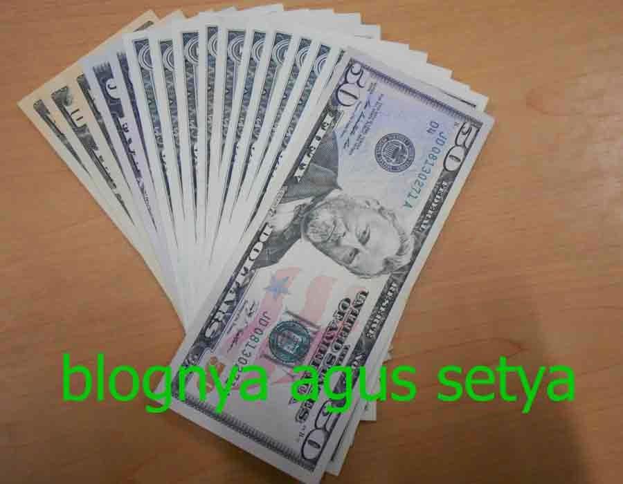 manfaat uang dolar