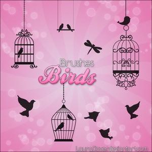 Birds Brushes Photoshop Brushes