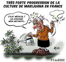 jardiner...