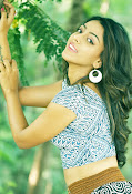 Deviyani sizzling hot photos gallery-thumbnail-17