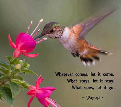 Whatever comes, let it come. What stays, let it stay. What goes, let it go.