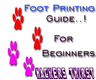 footprinting guide ethical hacking