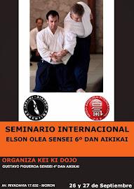 Seminario Sensei Elson Olea 6to Dan (Chile)