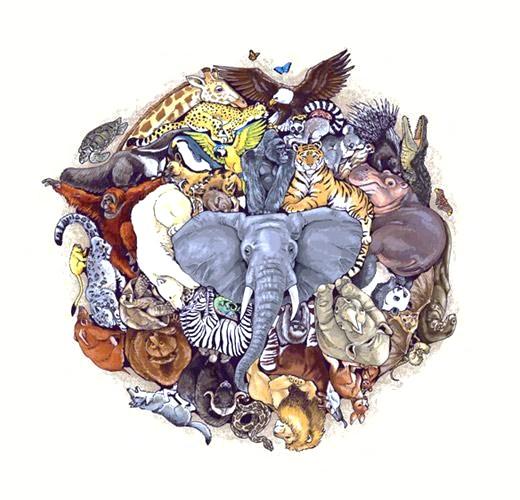 biodiversity+%25282%2529.jpg