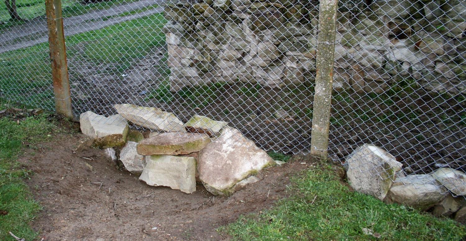 Epic dry stone walling skills