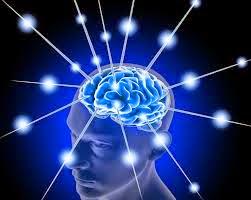 Gaya Komunikasi Otak Kanan