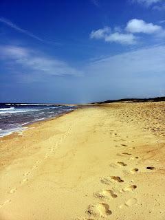 Vieux Boucau beach