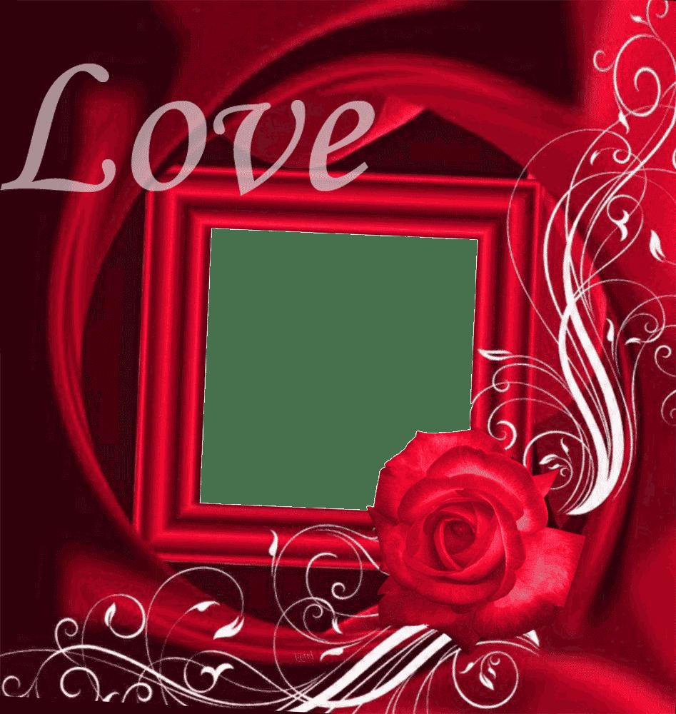 Marcos para Fotos Gratis: Marco Cuadrado de Rosa sobre el Amor
