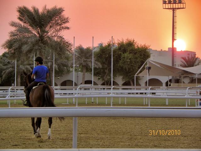 Que ver en Qatar: Escala de un día en Doha