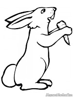 Gambar Kelinci Makan Wortel