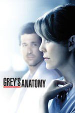 Grey's Anatomy S13E24 Ring of Fire Online Putlocker