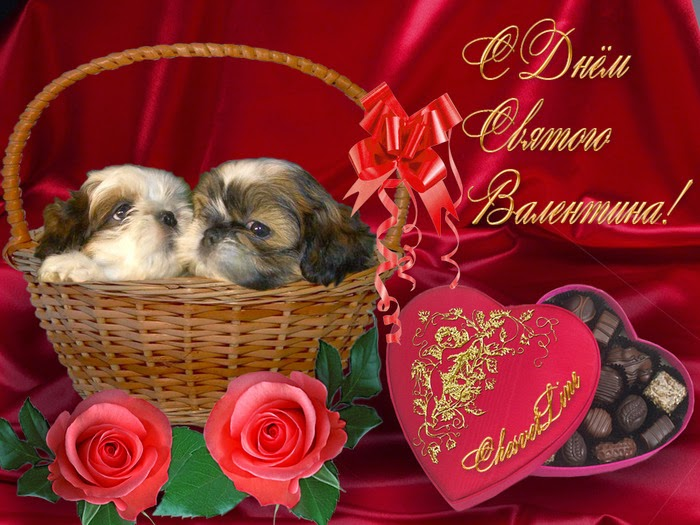 Красивые с днем святого валентина