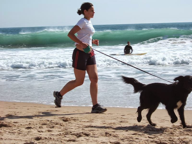Running with your dog is fun and rewarding. Courtesy of WikiMedia